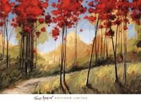 Forest Trail Fine Art Print