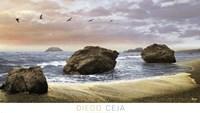 Bodega Beach II Framed Print