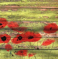 Red Poppies 1 Fine Art Print