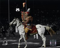 Florida Seminoles mascots Chief Osceola & Renegade 2014 BCS National Championship Game Fine Art Print
