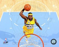 Ty Lawson 2013-14 Action Fine Art Print
