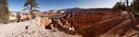 Rock formations at Bryce Canyon National Park, Utah, USA Fine Art Print