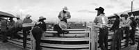 Cowboys at rodeo, Pecos, Texas, USA Fine Art Print
