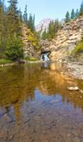 Flowing stream in a forest, Banff National Park, Alberta, Canada Fine Art Print