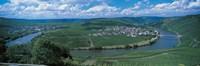 Vineyard Moselle River Germany Fine Art Print