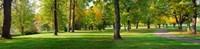 Trees in autumn, Blue Lake Park, Portland, Multnomah County, Oregon, USA Fine Art Print