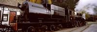 Kingston Flyer vintage steam train, Kingston, Otago Region, South Island, New Zealand Fine Art Print