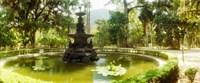 Fountain in a botanical garden, Jardim Botanico, Corcovado, Rio de Janeiro, Brazil Fine Art Print