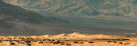 Sand dunes in a desert, Death Valley, Death Valley National Park, California, USA Fine Art Print