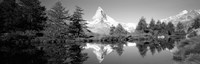 Reflection of trees and mountain in a lake, Matterhorn, Switzerland (black and white) Framed Print