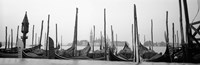 Gondolas moored at a harbor, San Marco Giardinetti, Venice, Italy (black and white) Fine Art Print