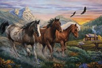 High Country Run Fine Art Print