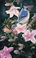Hint Of Spring Fine Art Print