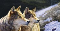 Brothers Of The Wild Fine Art Print