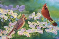 Cardinals Of Spring Fine Art Print