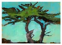 Cypresses Fine Art Print