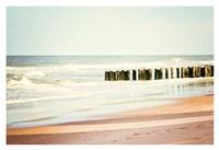 Shore Days Fine Art Print