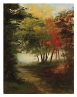 The Perfect Path Fine Art Print
