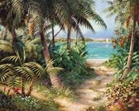 Bahama Sail Framed Print
