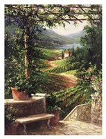 Chianti Vineyard Framed Print