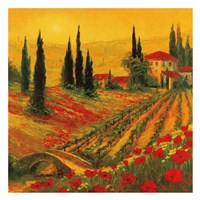 Poppies of Toscano I Fine Art Print