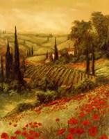Toscano Valley II Fine Art Print