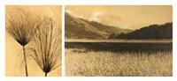 Bolinas Lagoon #7 Fine Art Print