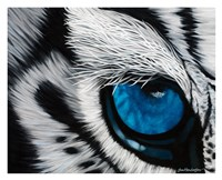 Tiger Eye Fine Art Print