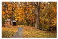 Autumn Home Fine Art Print