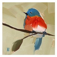Bluebird No. 21 Fine Art Print