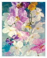 Seaborn 76 Fine Art Print