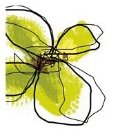Green Petals Fine Art Print