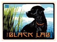 Black Lab Fine Art Print