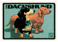 Dachshund Fine Art Print