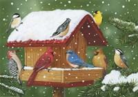 Backyard Birds, Holiday Treats Fine Art Print