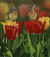 Monarchs And Tulips Fine Art Print
