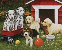 Puppy Playmates Fine Art Print
