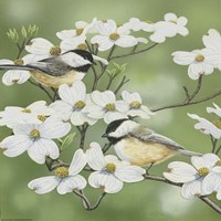 Springtime And Chickadees Fine Art Print