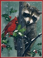 Raccoon - winter Framed Print