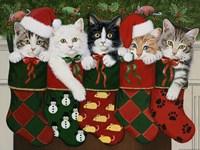 Christmas Kittens Framed Print