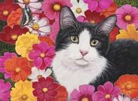 Phoebe Fine Art Print