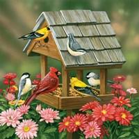 Backyard Birds Fall Feast Fine Art Print