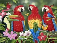 Tropical Friends Fine Art Print