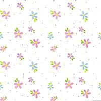 Spring Flower Fine Art Print