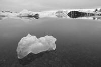 Iceberg 2 B&W Fine Art Print