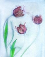 Tulipanes Rojos Fine Art Print