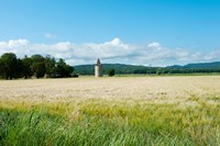 Wheat field with a tower, Meyrargues, Bouches-Du-Rhone, Provence-Alpes-Cote d'Azur, France Fine Art Print