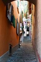 Town steep street, Varenna, Como, Lombardy, Italy Fine Art Print