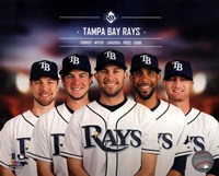 Tampa Bay Rays 2014 Team Composite Framed Print