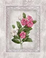 Floral III Fine Art Print